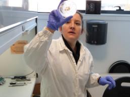 Recherches en laboratoire